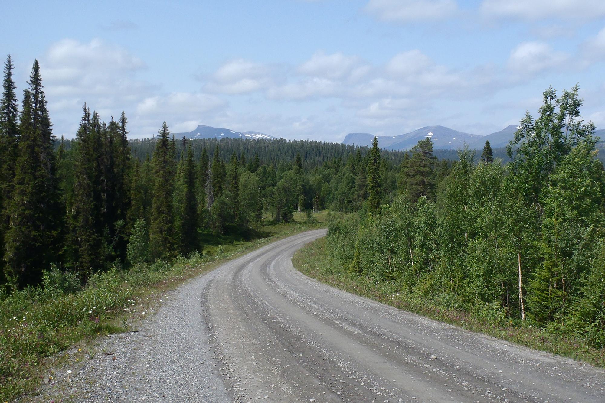 Stage 2 - Hard grind on roads