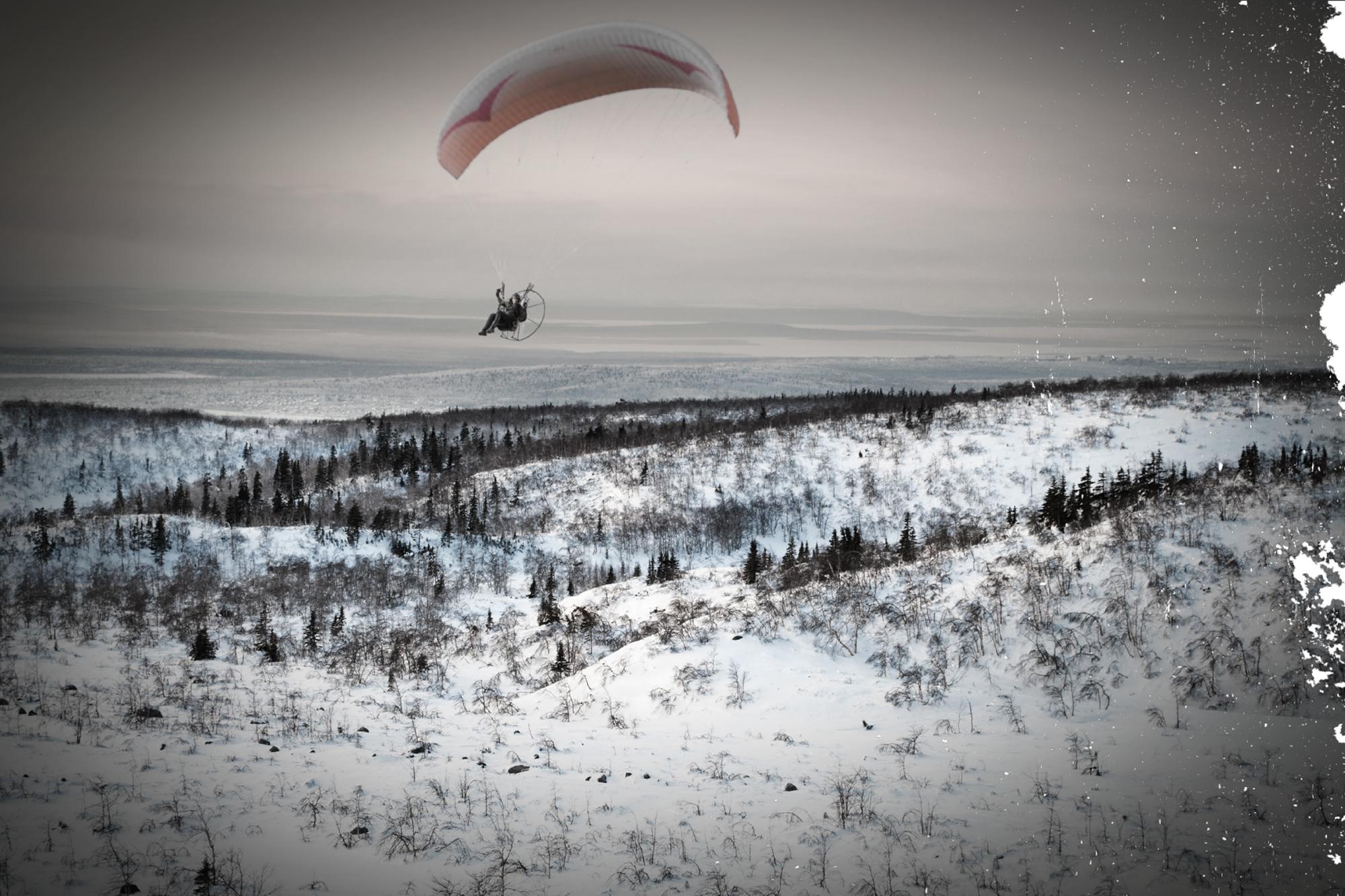 Sacha over tundra landscape