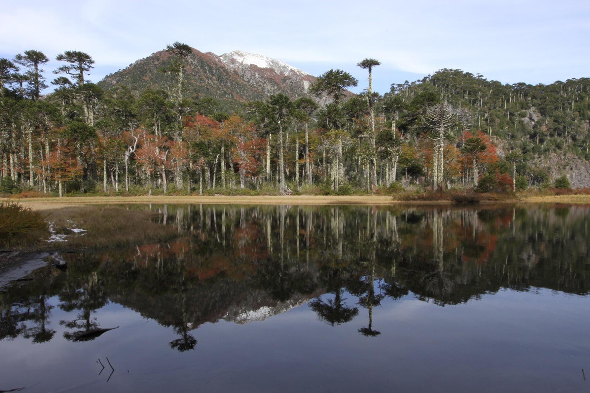 Huerquehue National Park, Chile