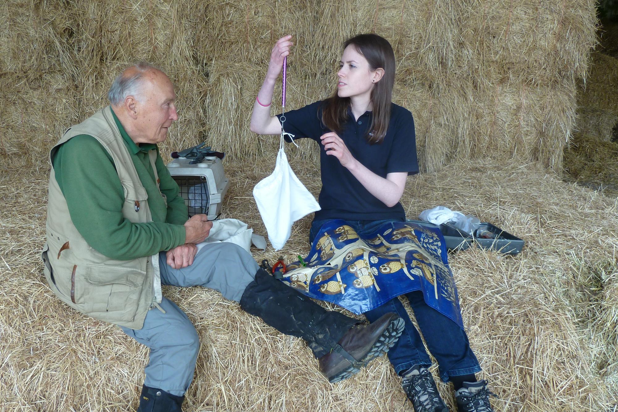 Nigel Lewis and Emily Joachim ringing Barn Owls by Richard Clayton